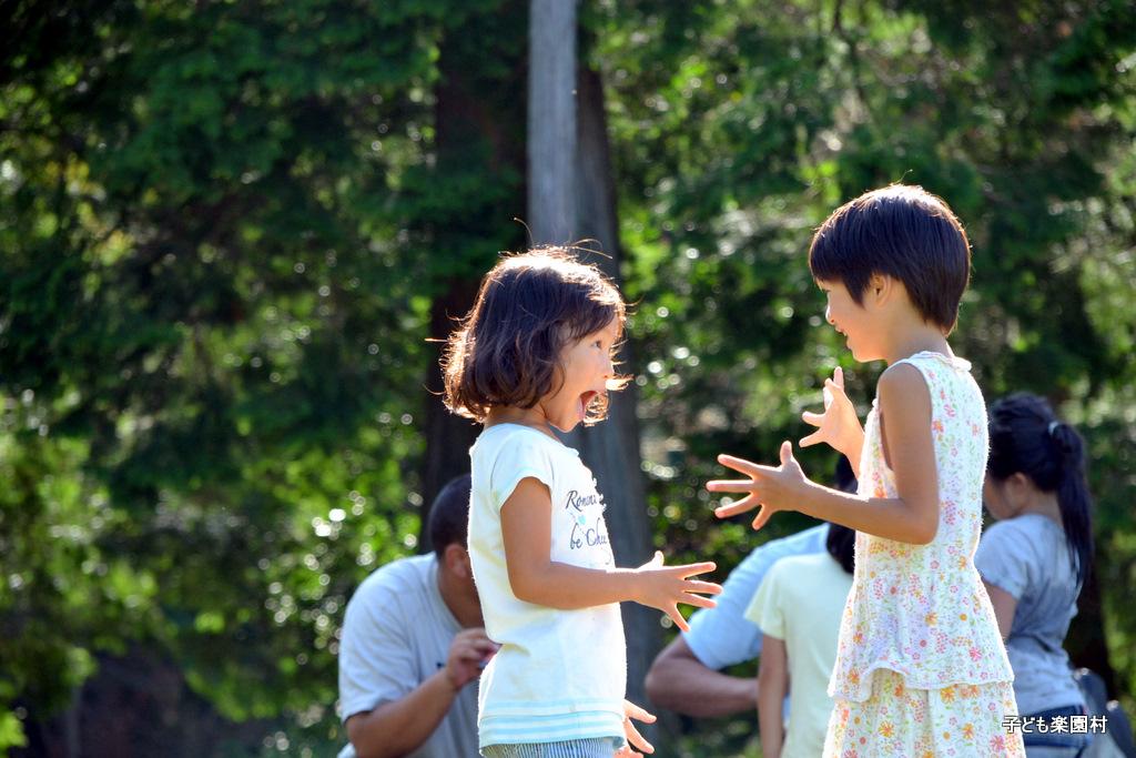 2011年夏の春日山楽園村感想文