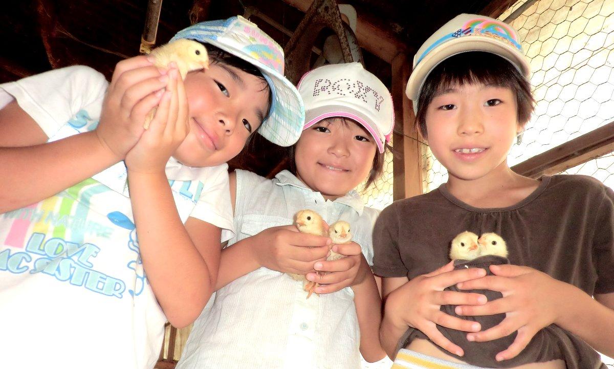 夏の楽園村2011岡部フォトムービー