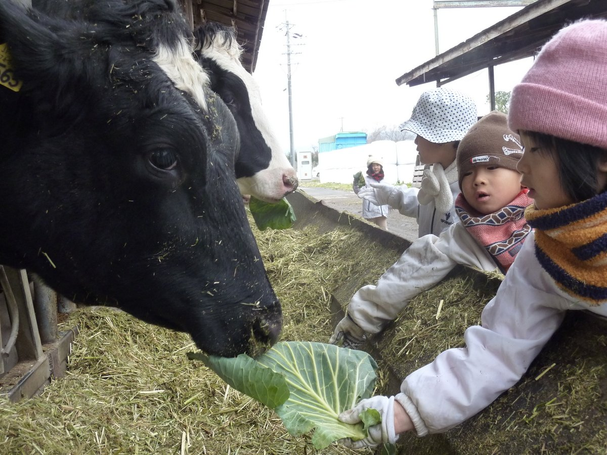2012冬の春日山楽園村【ムービー】