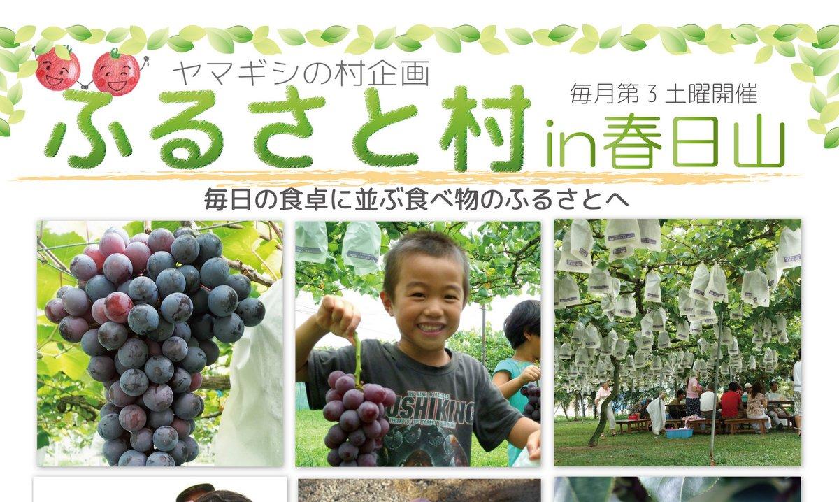 ふるさと村in春日山スケジュール
