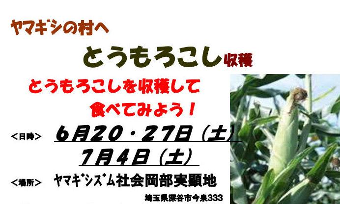 ふるさと村in岡部<br/>とうもろこし収穫