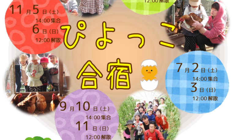 ぴよっこ合宿スケジュール2016