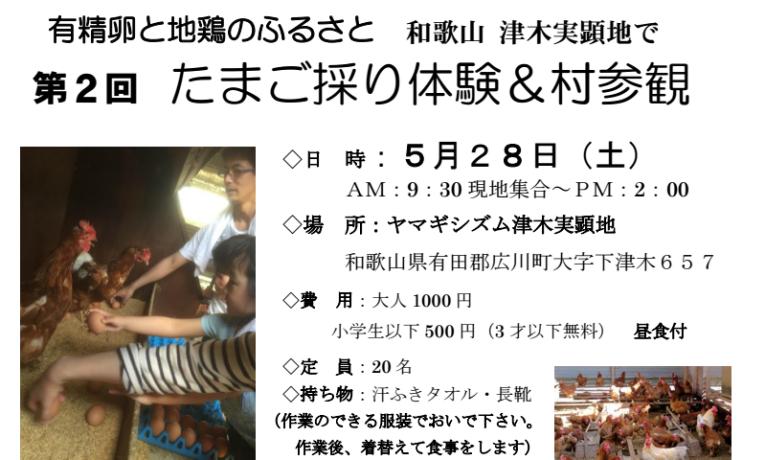 農場体験in津木(和歌山)<br/>たまご採り体験