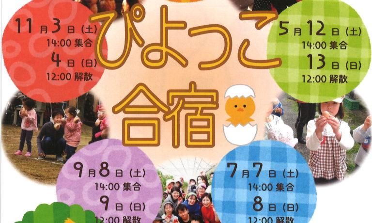 ぴよっこ合宿・わくわく子ども合宿<br/>スケジュール2018